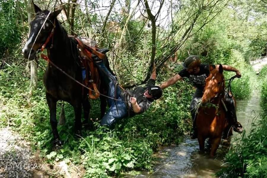 Reitunfall Seitliche Fallen vom Pferd